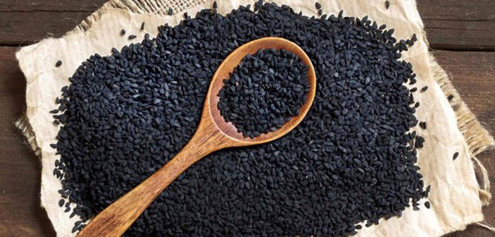 Bio Schwarzkümmelsamen für Bio Schwarzkümmelöl